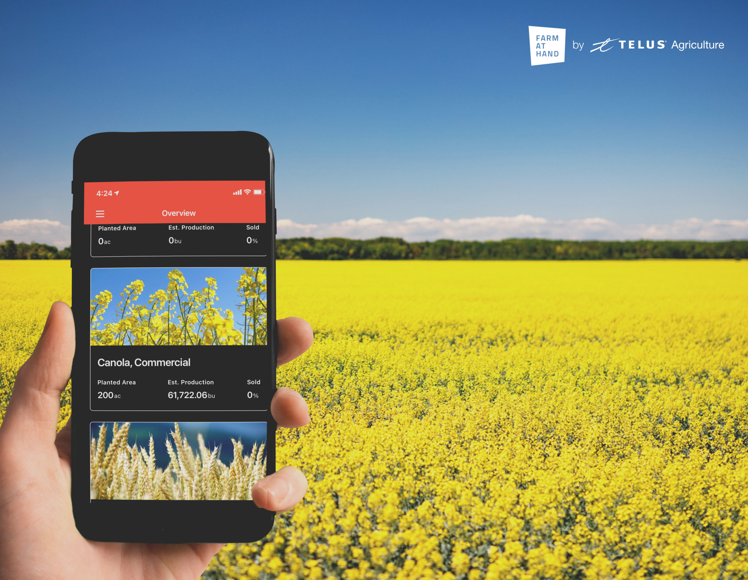 farm at hand app with crop planner in front of a canola field